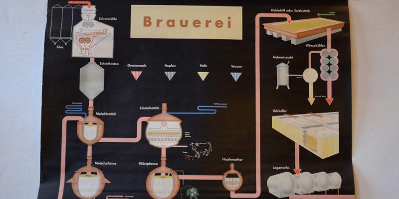 Gut erklärt: Der Ablauf des Brauprozesses Schritt für Schritt © Böhnlein/Lachenicht/Müller