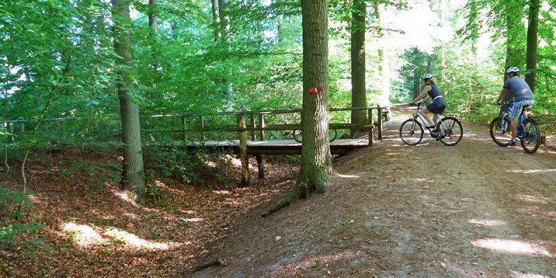 Heute führt eine Brücke über die Wälle der Alten Landwehr © Michelberger/Schwambach