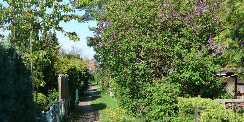 Grüne Schleichwege zwischen den Grundstücken © Götz/Ruhkopf
