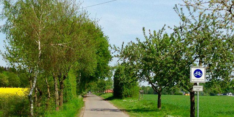 Fahrradstraße westlich von Lüneburg © Rosenau/WItt