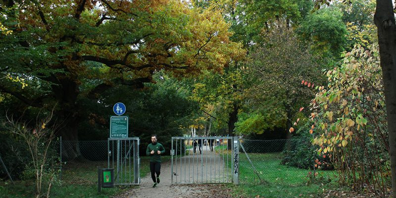 Zaun in der Kurparkmitte – für Viele ein ästhetisches Ärgernis, für Manche ein unnötiger Engpass. © Scheidt