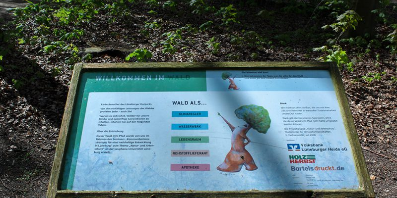 Ein Waldlehrgang führt spielerisch an Themen rund um den Wald heran und lädt zum Entdecken und Lernen ein.© Scheidt