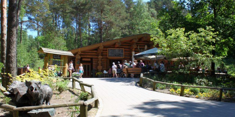 Die Elch-Lodge im Grünen © Spangenberg