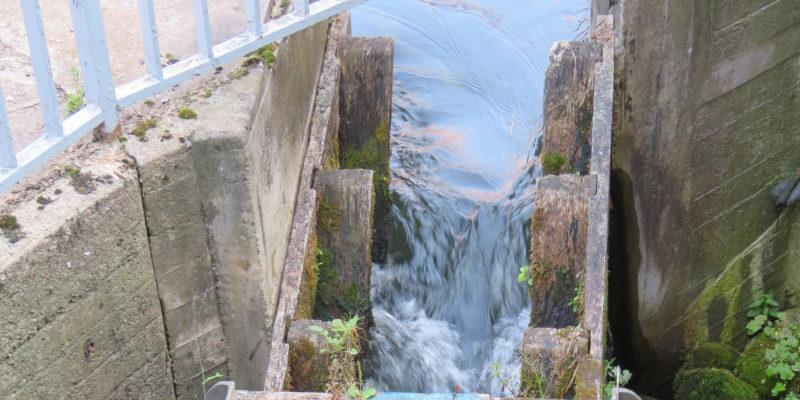Hier beginnt die Fischtreppe. Sie führt die Fische durch eine Art Gang eine Treppe hinab, damit diese sicher von einer Seite der Brücke auf die andere gelangen. Hier siehst du oben im Bild den Eingang zur Treppe © Grosser