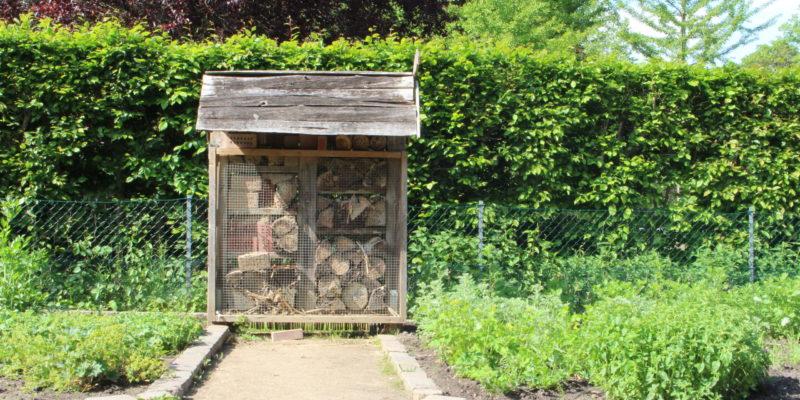 Insektenhotel im Kurpark © Lamm