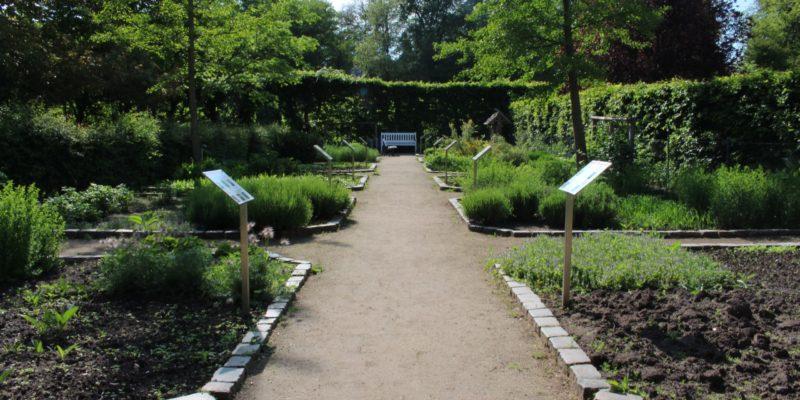 Kräutergarten im Kurpark © Lamm