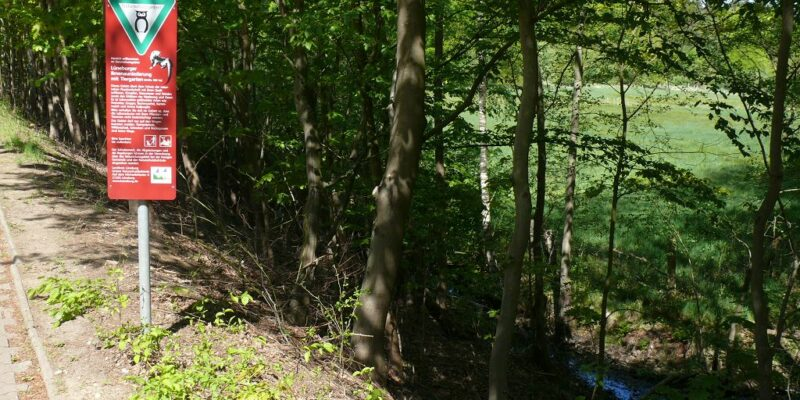 Das Naturschutzgebiet Lüneburger Ilmenauniederung mit Tiergarten © Stumpe
