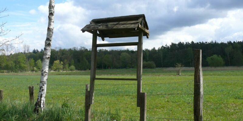Ein Rahmen für die malerische Ilmenau-Niederung © Stumpe