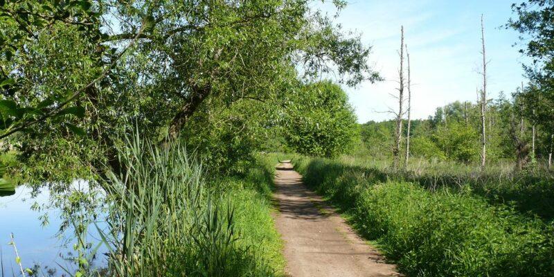 Weg an der Poggenwiese entlang © Stumpe