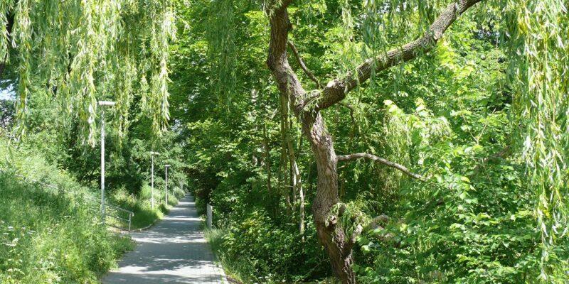 Der Fahrradweg am Lösegraben führt an der Innenstadt vorbei © Stumpe