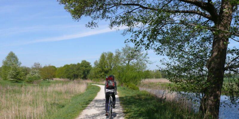 Der Treidelpfad nach Bardowick führt am Flussufer und Ackerland entlang © Stumpe
