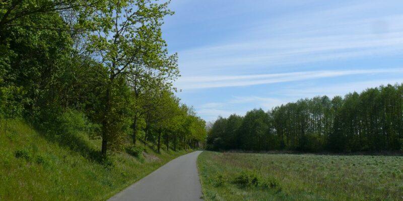 Weg entlang der A39 © Stumpe