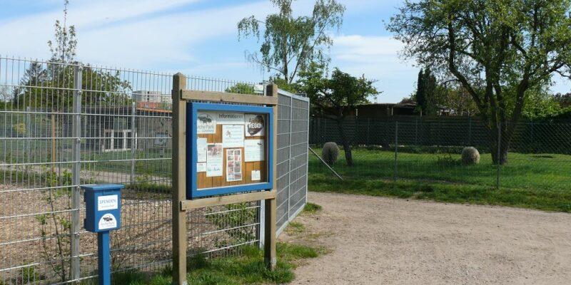 Der Arche-Park des SCHUBZ Umweltbildungszentrums © Stumpe
