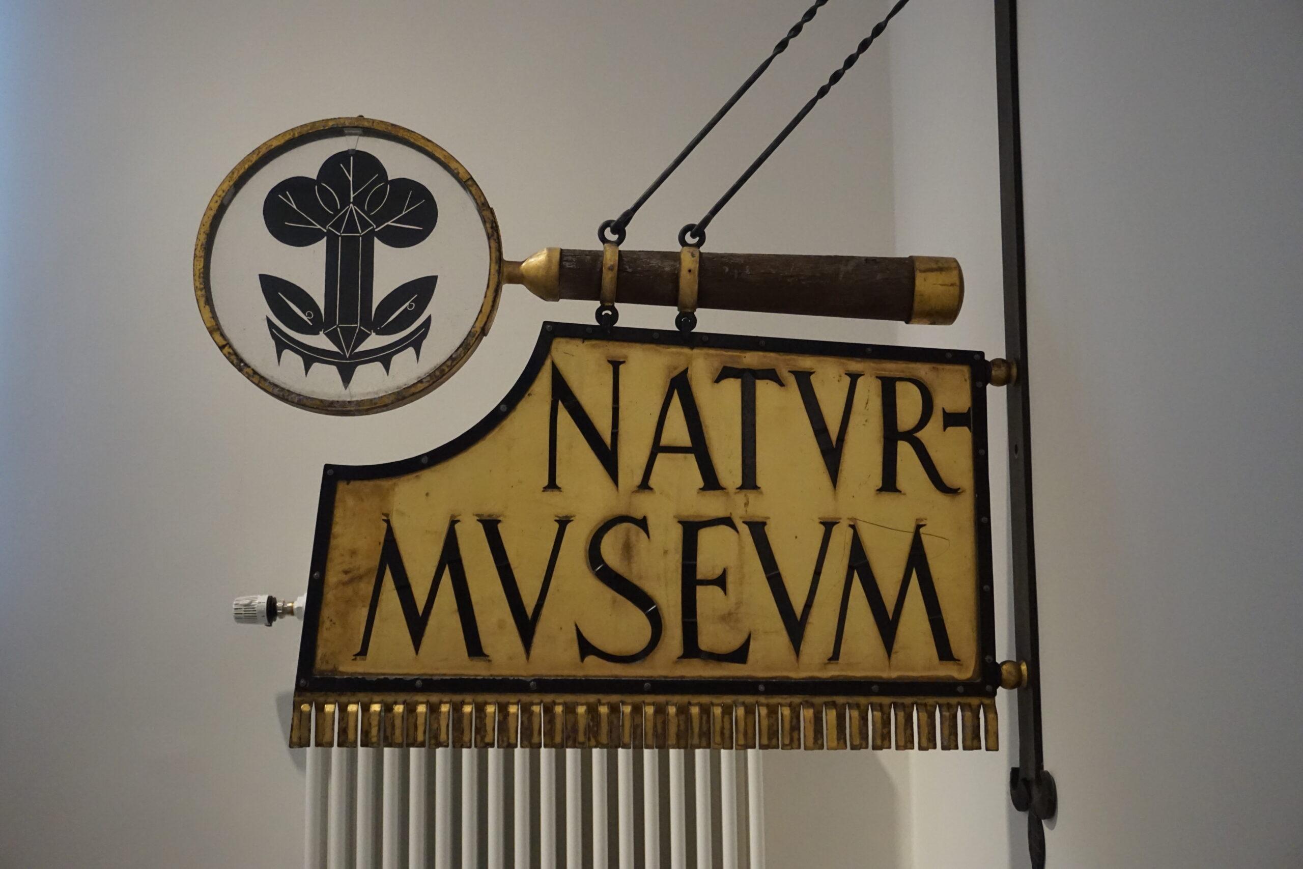 Das ehemalige Naturkundemuseum wurde zusammen mit dem Museum für das Fürstentum Lüneburg und der Ritterakademie zum neuen Museum Lüneburg © Hardt/Gelbe